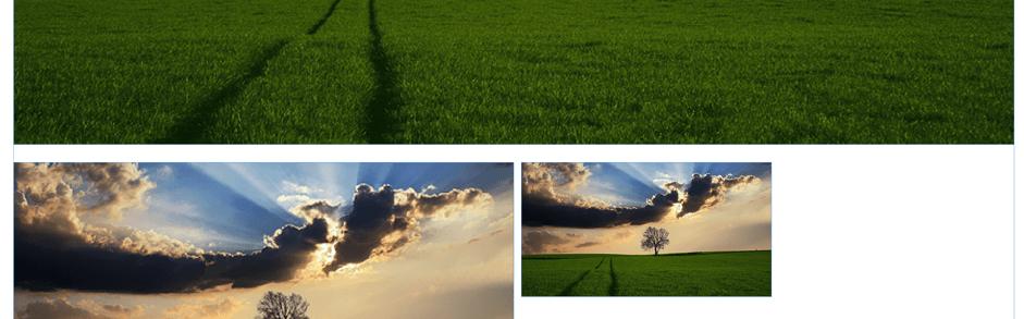 Muse - 3 Bilder eingefügt