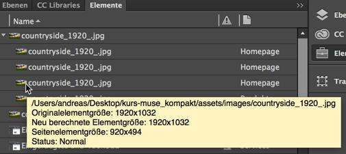 Muse - Bedienfeld Elemente - Bildeigenschaften