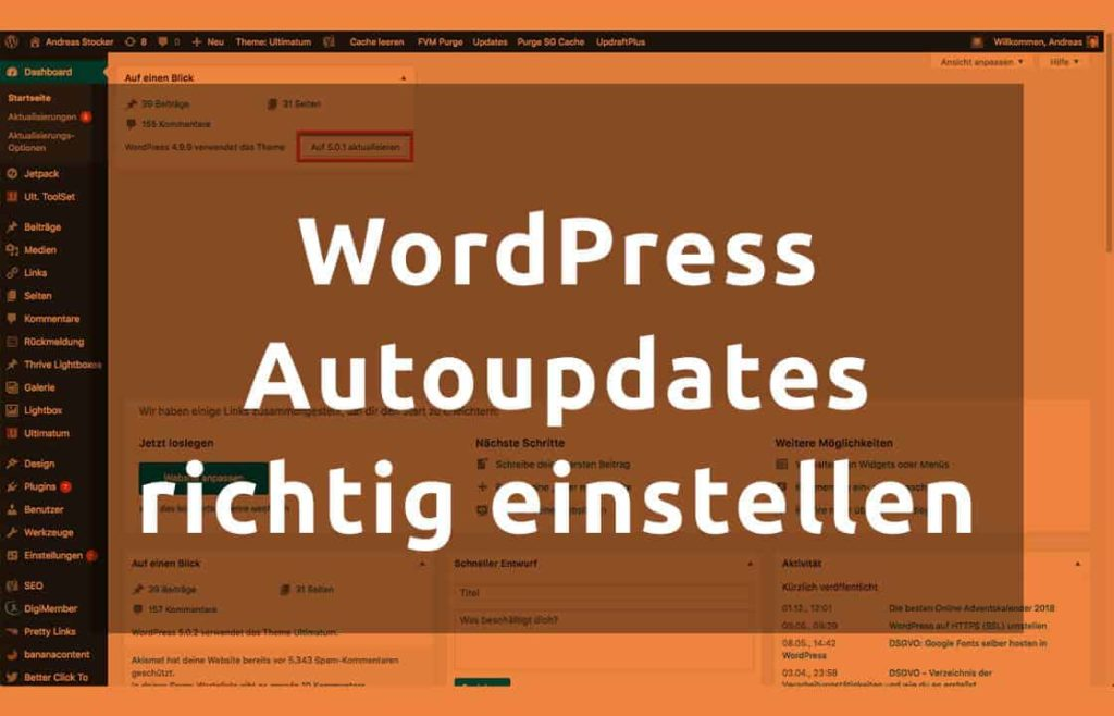 BLOG WordPress Autoupdates
