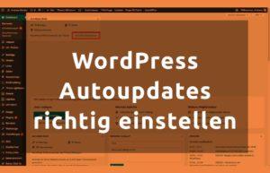 BLOG WordPress Autoupdates